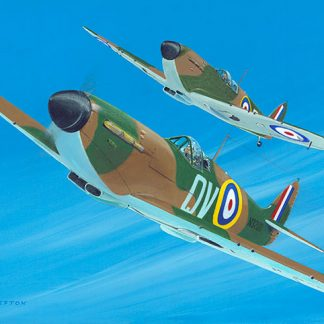 Spitfires limited edition print
